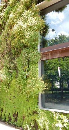 Musee Du Quai Branly   Jacques Chirac: Bottom Of Hanging Garden Wall