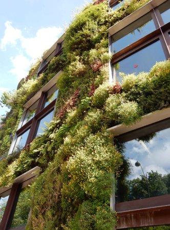 Musee Du Quai Branly   Jacques Chirac: Top Of Hanging Garden Wall