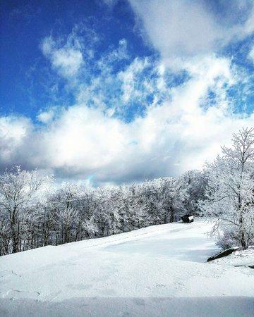 Beech Mountain, Βόρεια Καρολίνα: IMG_20170315_174147_542_large.jpg