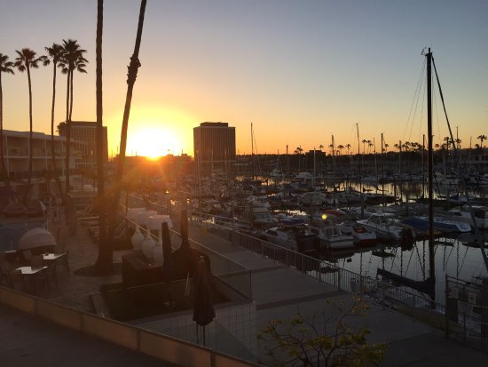 Marina del Rey, แคลิฟอร์เนีย: photo0.jpg