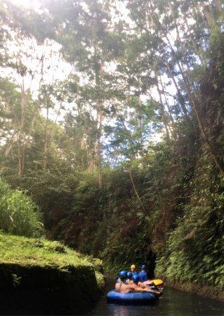 Hanamaulu, Hawaï : photo5.jpg