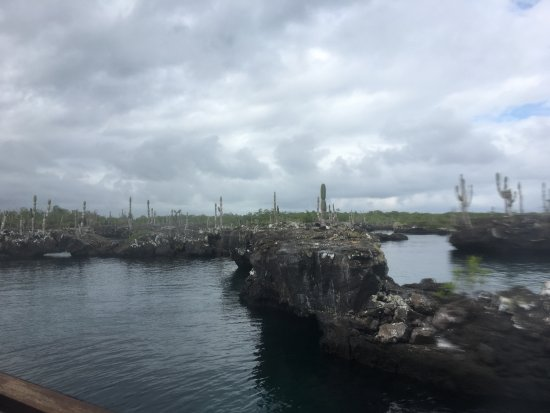 Puerto Villamil Photo