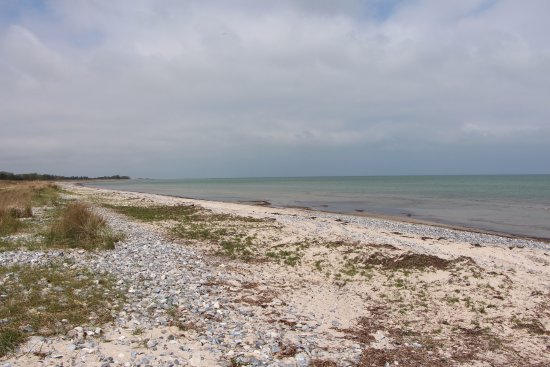"Stege, Dänemark: The long beach """"Ulvshale Strand""."