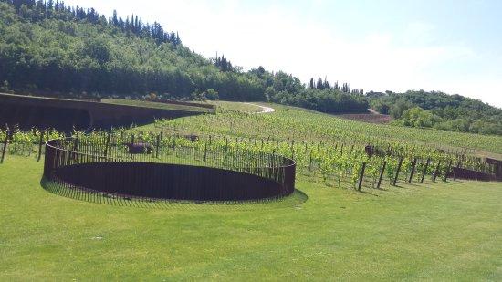 San Casciano in Val di Pesa, Italia: Antinori nel Chianti Classico