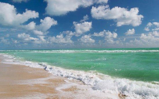 South Florida, FL: South Beach