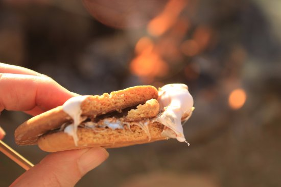 Jedburgh, UK: S'mores on the camp fire