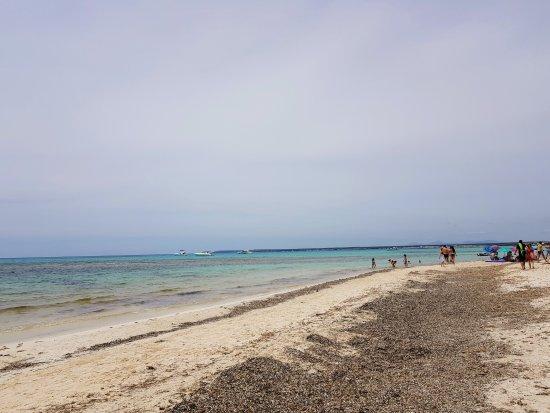 Playa de Es Trenc: 20170521_134206_large.jpg