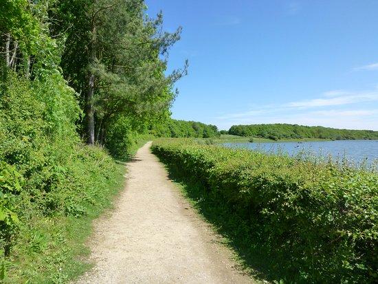 Polegate, UK: Pathway