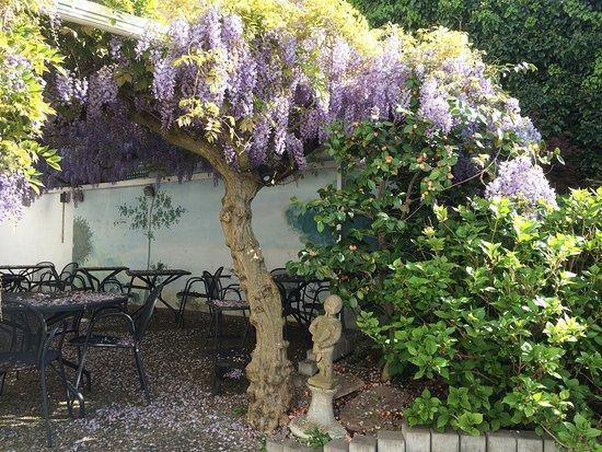 Der garten  Der Eingangsbereich und der Garten - Beauséjour Hôtel & Restaurant ...