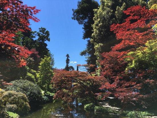 i Giardini di Villa Melzi Photo
