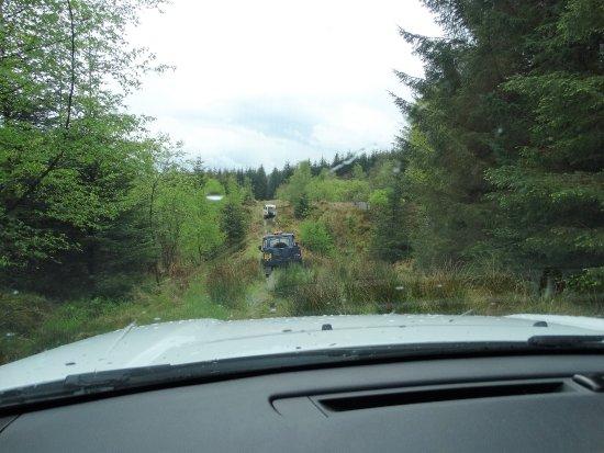 Kielder, UK: Into the forest track