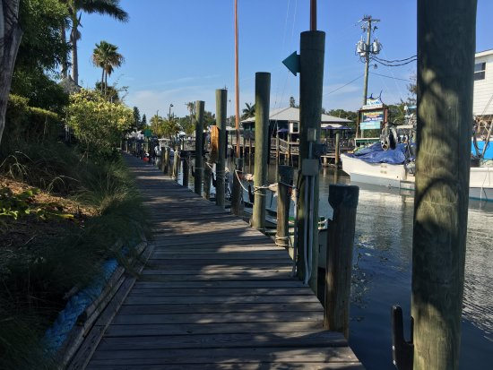 Cortez, FL: View