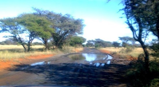 Kimberley, Afrique du Sud : tarred road between camps on a good day