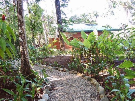 El Remanso Lodge-bild