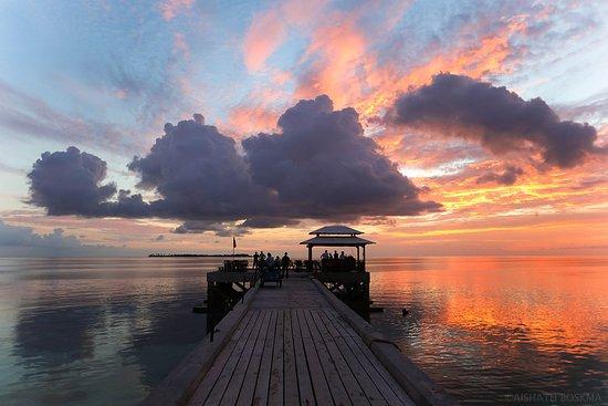 Wakatobi Dive Resort Photo