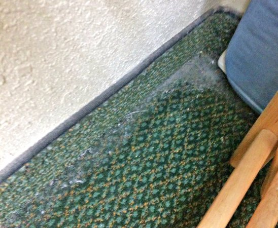 Huntersville, Carolina do Norte: Filthy carpet with a thick layer of dust in all corners and around the perimeter of the room.