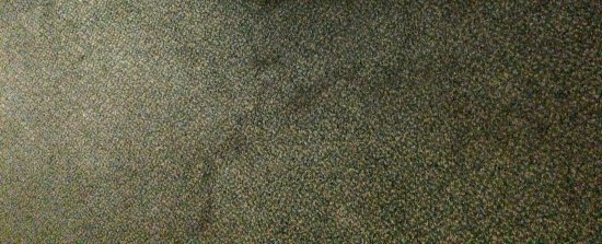 Huntersville, Carolina do Norte: The filthy carpet smelled, and it was actually sticky when walked upon in bare feet.