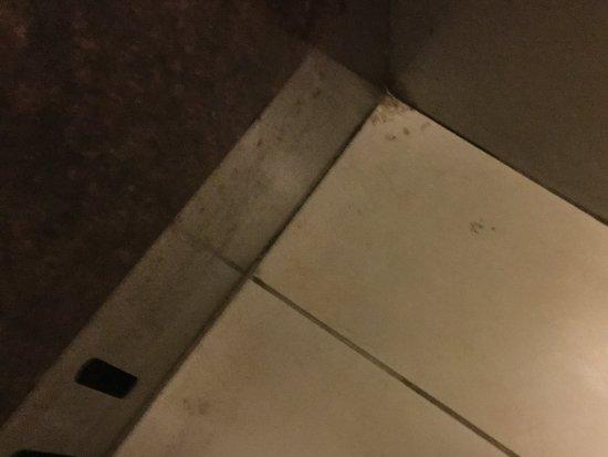 Homewood Suites by Hilton Fresno : Elevator