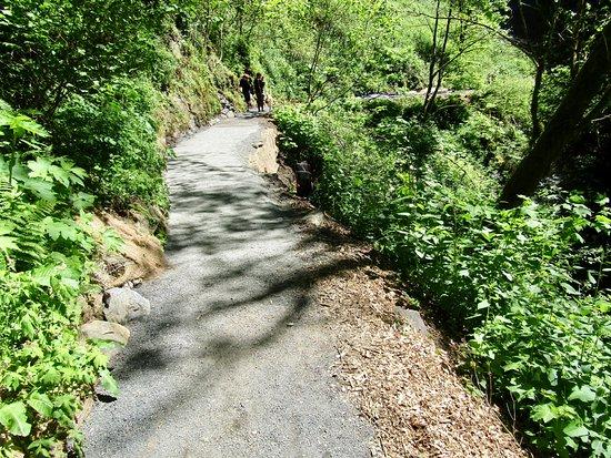 Corbett, Oregón: Lower trail