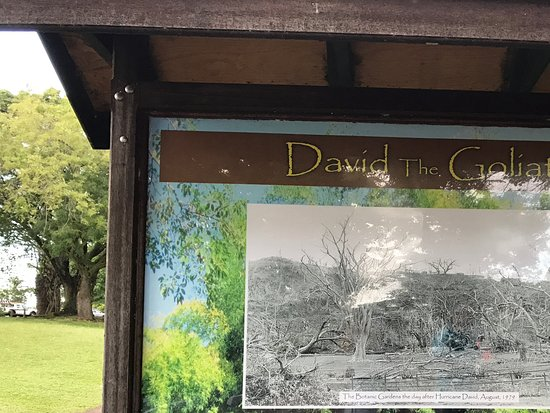 Roseau, Dominica: Signage talking about Hurricane David of 1979