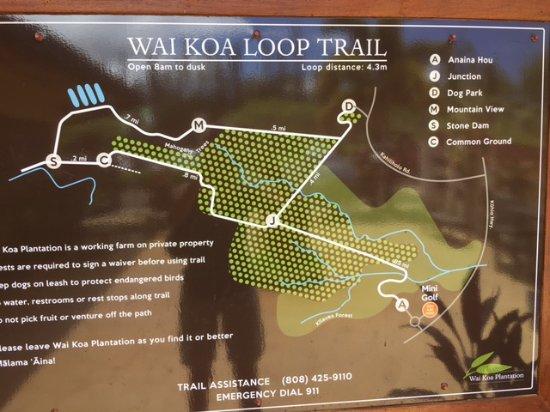 Kilauea, Hawái: Map of Trail