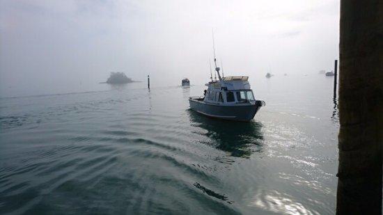 Kerikeri, Nowa Zelandia: Misty morning, Spot-X