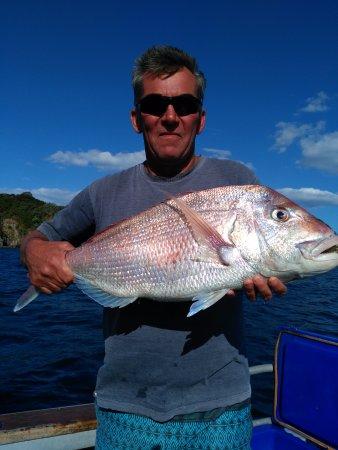 Kerikeri, Nowa Zelandia: Snapper trip Feb-17