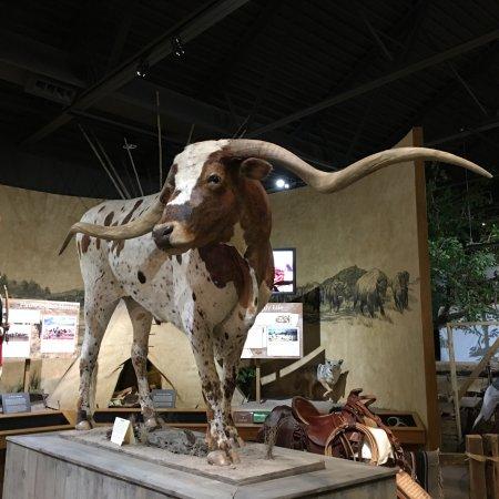 Weatherford, TX: photo1.jpg