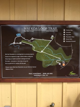 Kilauea, Hawái: Loop Trail - if you have time to do it