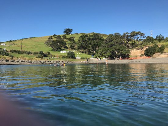 Leigh, New Zealand: Goat Island Marine Reserve