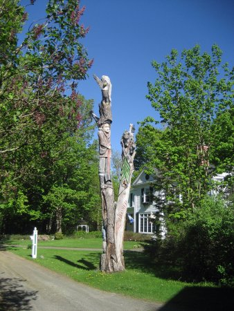Stanstead, Canada: Chainsaw carvings on dead tree