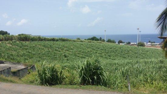 Basse-Terre, Guadeloupe: 20170520_104542_large.jpg