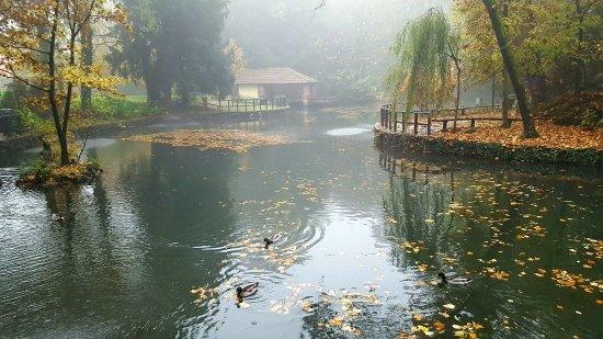 Gorgonzola, Italia: Il laghetto in autunno