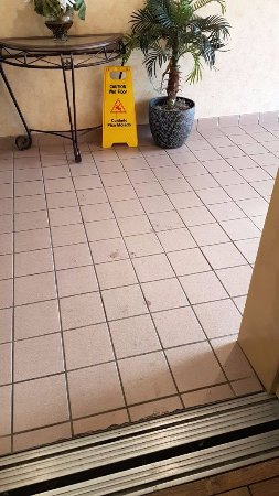 Best Western Tunica Resort: Filthy floors (level 1) during three days