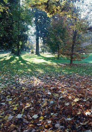 Gorgonzola, Italia: Il parco in autunno