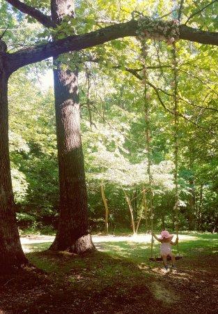 Clay City, IN: Azalea Path Arboretum and Botanical Gardens