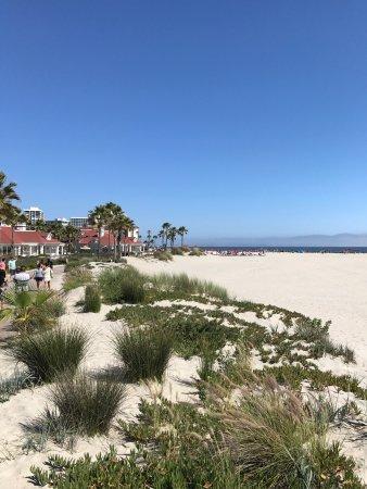 Coronado, CA: photo1.jpg