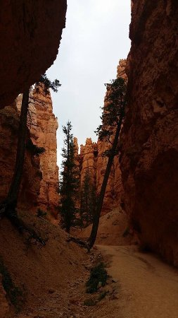 Bryce Canyon National Park: photo1.jpg