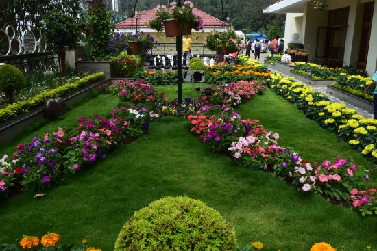 Gem Park-Ooty: Garden near lobby