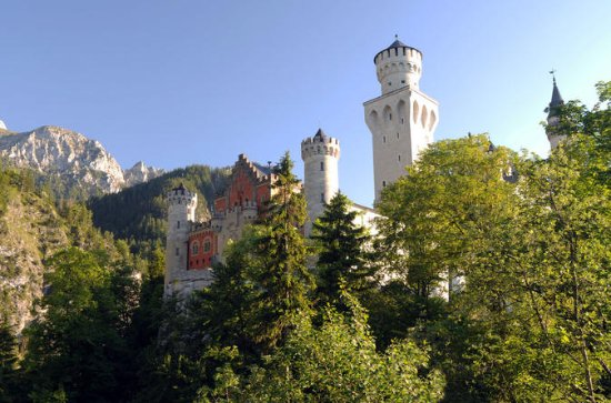 Neuschwanstein Castle Tour from...