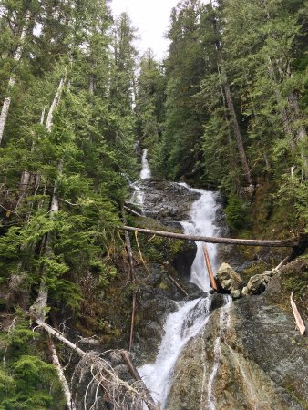 Port Alberni, Canada: Long falls by the trail
