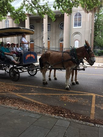 Two Meeting Street Inn: view of horse and carriage