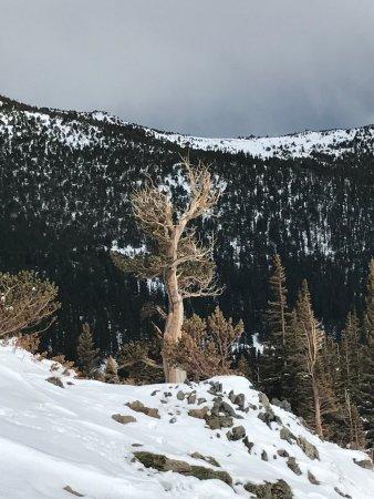 Idaho Springs, CO: photo4.jpg