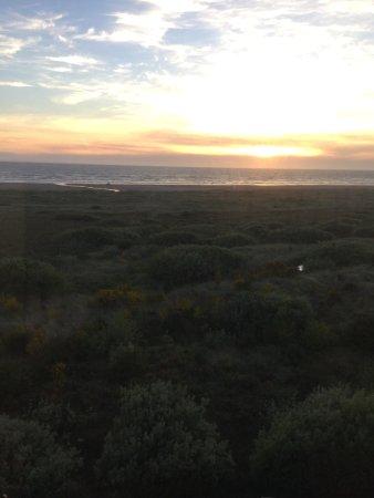 Ocean Shores, WA: Great views!