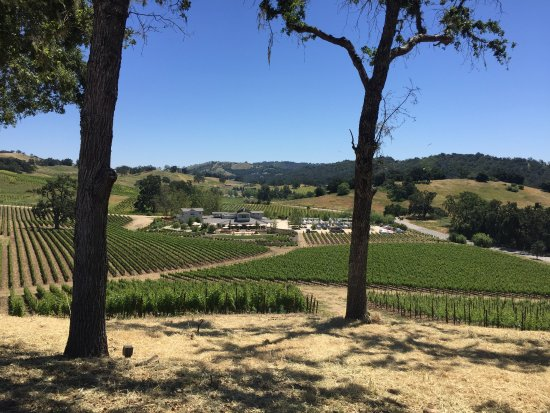 Paso Robles, Kalifornia: Tasting Room & Grounds