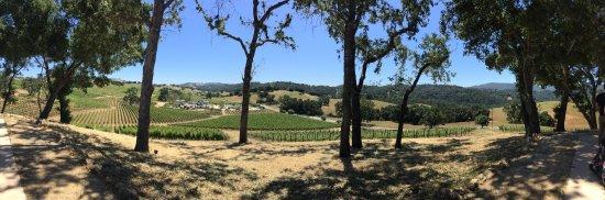 Paso Robles, Kalifornia: Grounds
