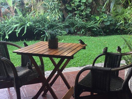 호텔 마나바이 사진