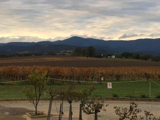Coldstream, Australia: Tokar Estate Views over vineyards