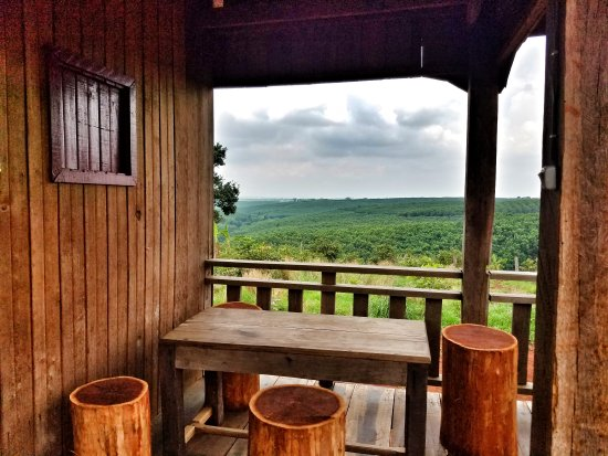 Banlung, Камбоджа: Tree Trails Travel Lodge