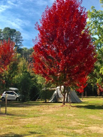 Beechworth, Australia: Unpowered camp site